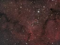 IC1396A, elephant´s trunk...