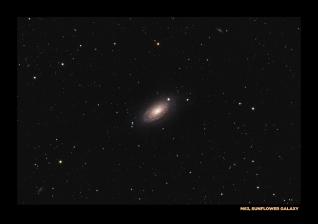 M63, sunflower galaxy...